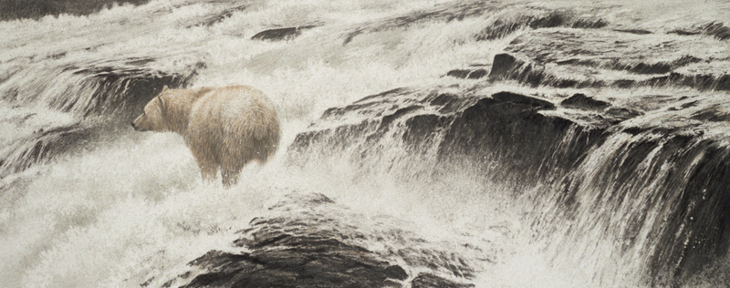 Robert Bateman Spirit Bear