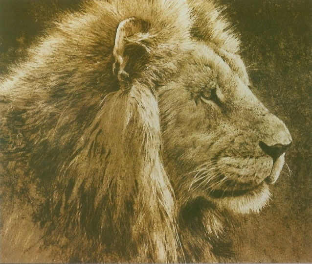 Robert Bateman Lion Head