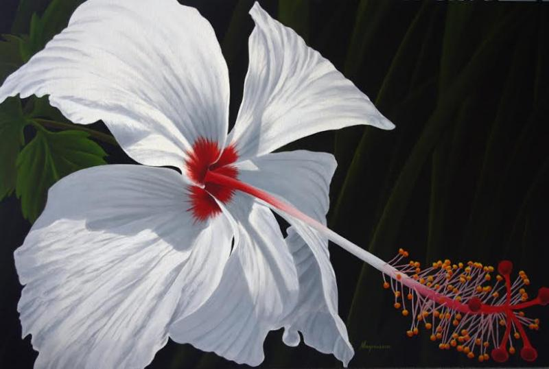 Dennis Magnusson Reaching Out - White Hibiscus