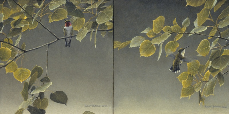 Robert Bateman Hummingbird Pair