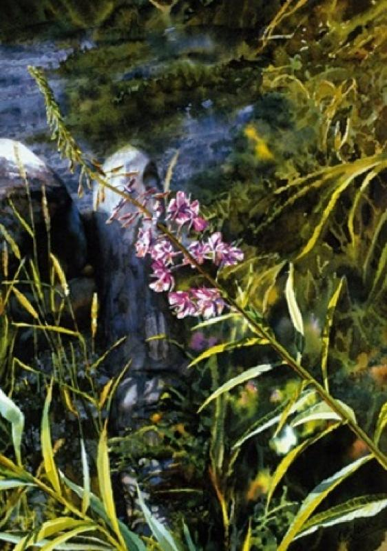 Carol Evans Fireweed on the Beach