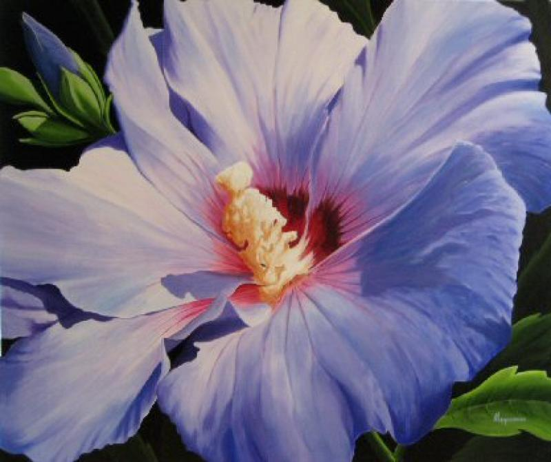 Dennis Magnusson Blue Rose of Sharon