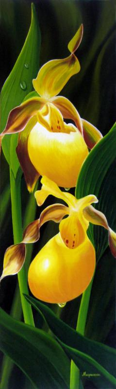 Dennis Magnusson Lady Slippers