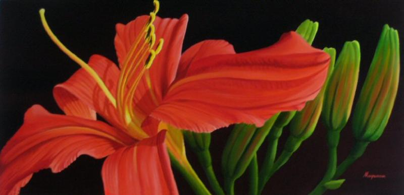 Dennis Magnusson Daylily