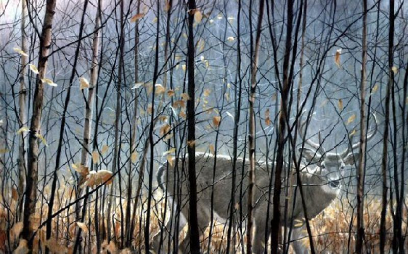 Robert Bateman White-Tailed Deer Through the Birches