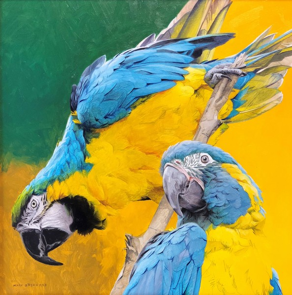 Mark Eberhard Parrot Pair