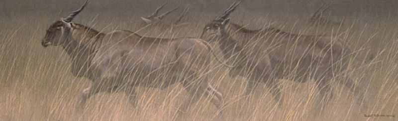 Robert Bateman Eland Group