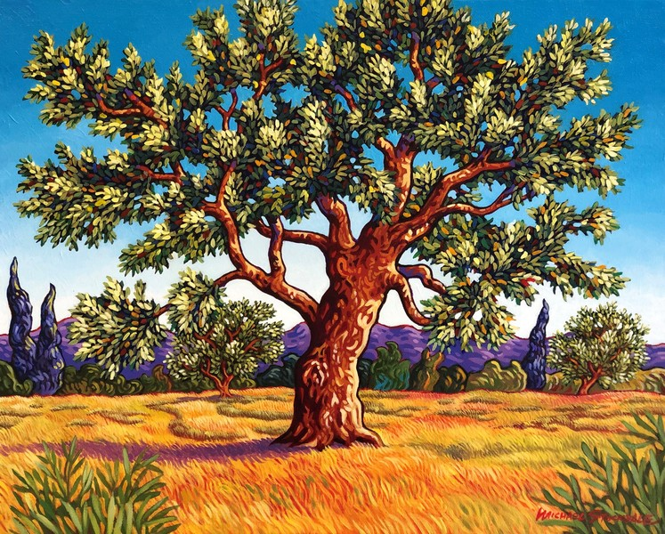 Michael Stockdale Olive Trees in Provence