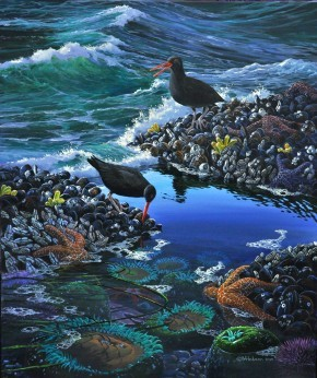 Mark Hobson Oystercatchers: Between Surges