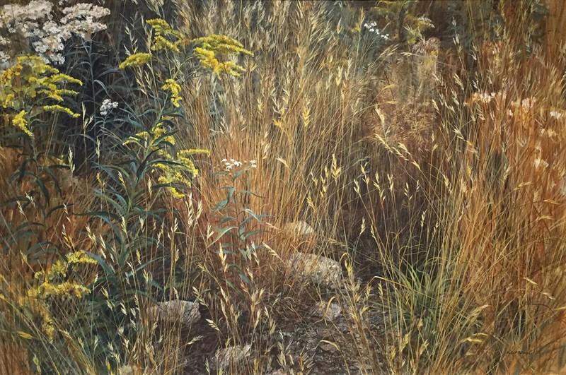 Robert Bateman Marginal Meadow