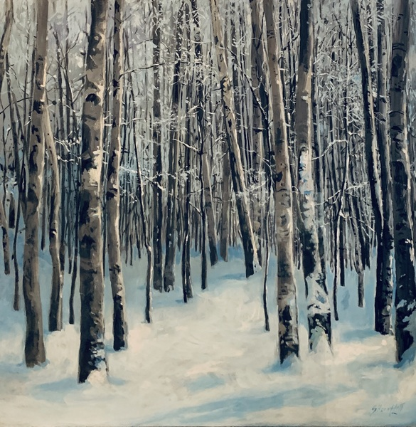 Silence in the Snow by Sheena Lott