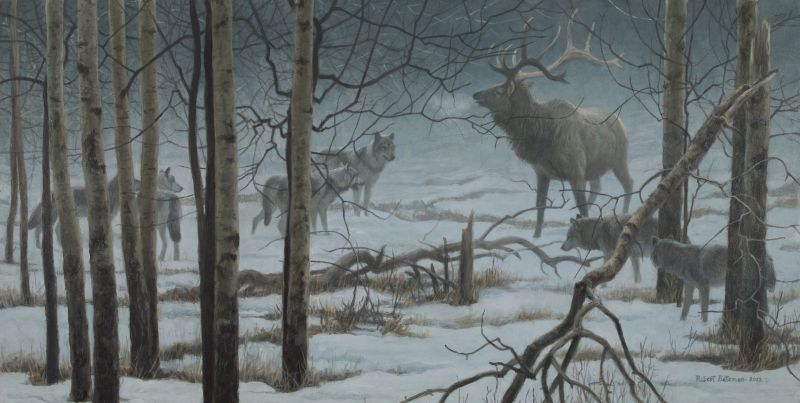 Robert Bateman The Standoff - Elk & Wolves