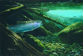 Mark Hobson Steelhead Trout: Out of the Shadows