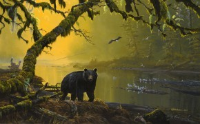 Mark Hobson Black Bear: Tranquil River