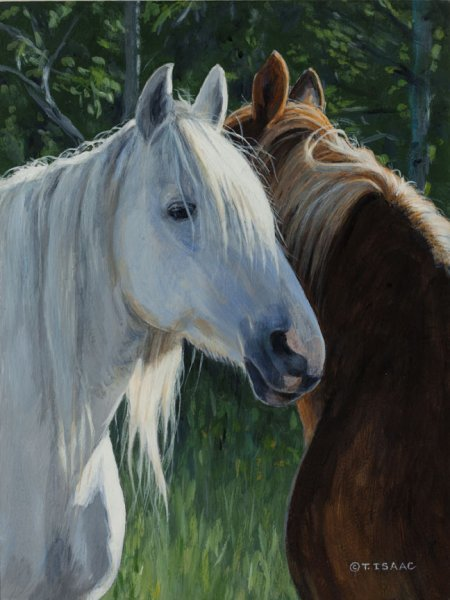 Terry Isaac Horse Whisperers