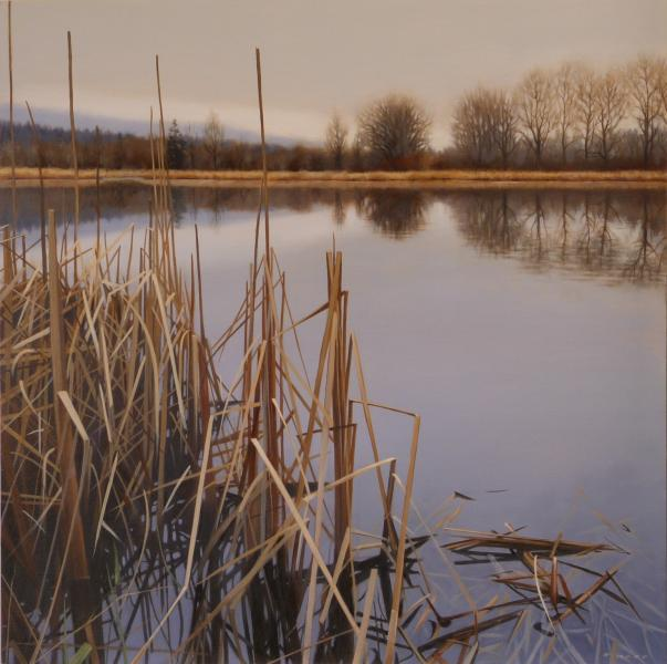 Ray Ward Wetland Silence