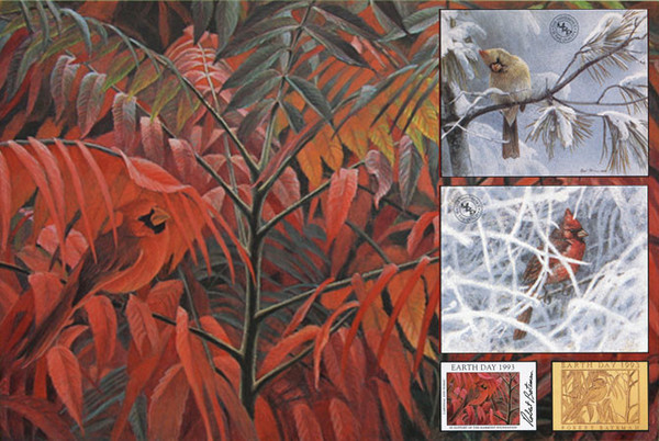 Robert z Bateman Cardinal and Sumac – Global Edition