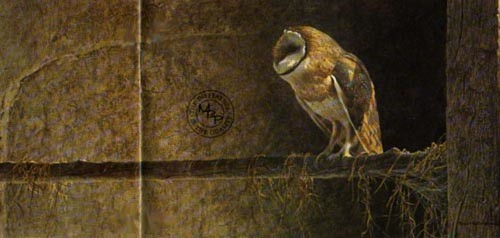 Robert z Bateman Catching The Light – Barn Owl