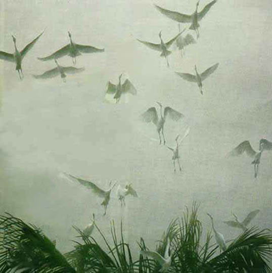 Robert z Bateman Egrets Of The Sacred Grove