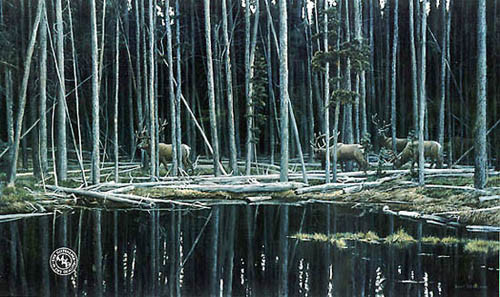 Robert z Bateman Elk At Yellowstone