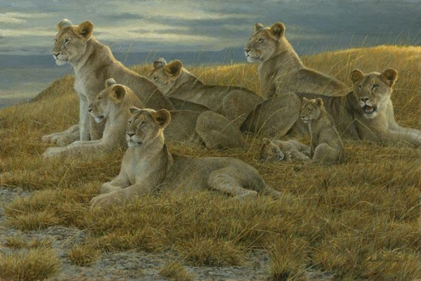 Robert z Bateman Family Gathering – Lioness and Cubs