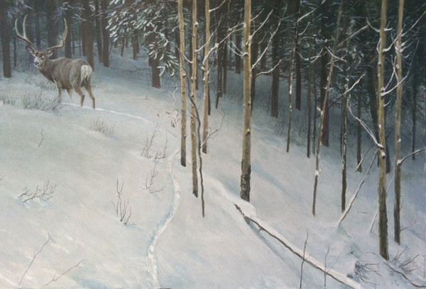 Robert z Bateman Forest Trail Mule Deer