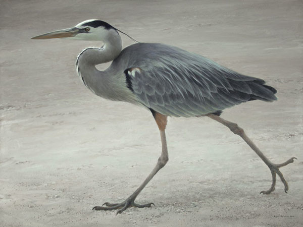 Robert z Bateman Full Stride – Great Blue Heron