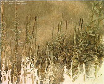 Robert z Bateman Goldfinch With Mullein