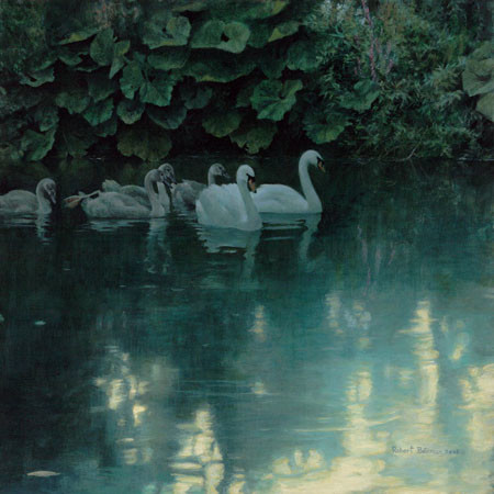 Robert z Bateman Great Dunford Mute Swans