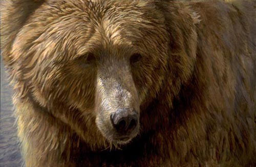 Robert z Bateman Grizzly Head