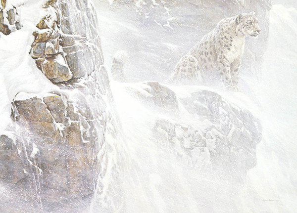 Robert z Bateman High Kingdom – Snow Leopard
