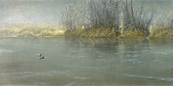 Robert z Bateman High Water-Mallard Pair