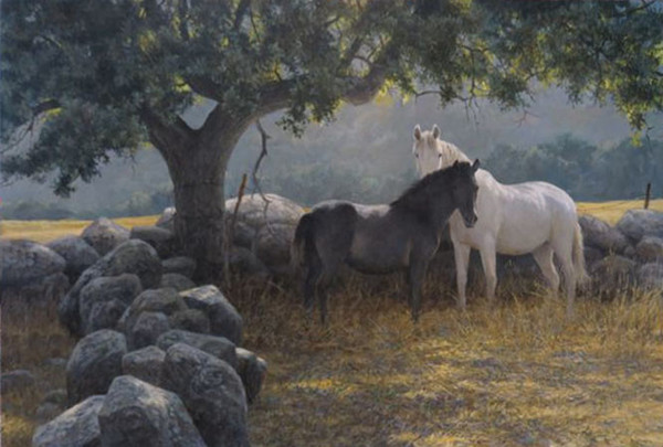 Robert z Bateman In the Field – Mare and Foal