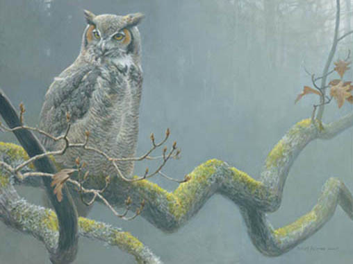 Robert z Bateman In the Oak – Great Horned Owl