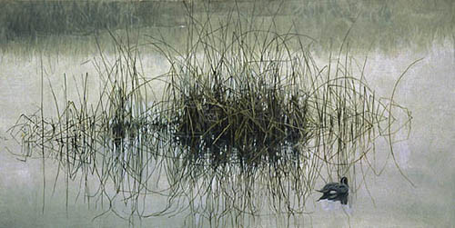 Robert z Bateman Morning Calm