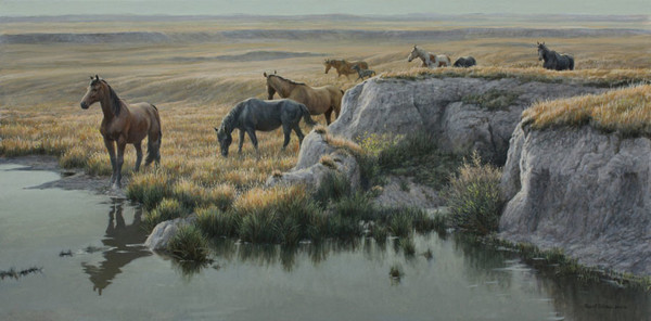 Robert z Bateman Mustang Country