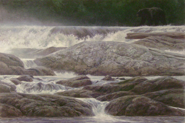 Robert z Bateman Navigating the Rapids – Black Bear