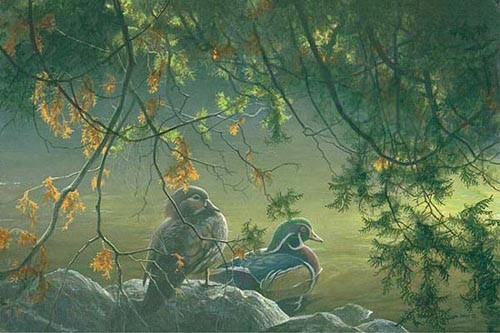 Robert z Bateman On The Pond – Wood Ducks