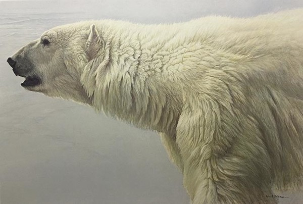 Robert z Bateman Polar Bear Profile