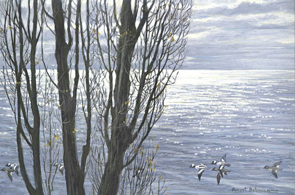 Robert z Bateman Poplar Trees and Buffleheads
