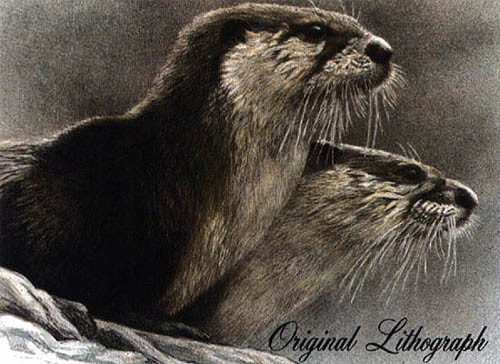 Robert z Bateman River Otters
