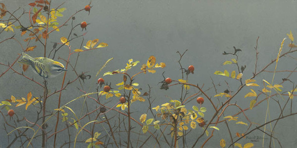 Robert z Bateman Rose Hip and Kinglet