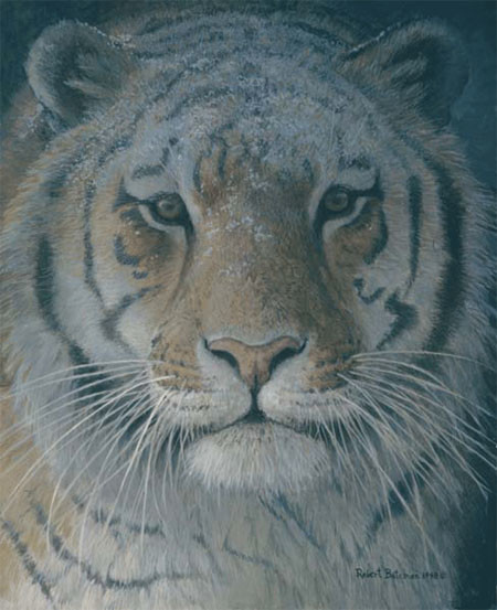 Robert z Bateman Tiger at Dusk