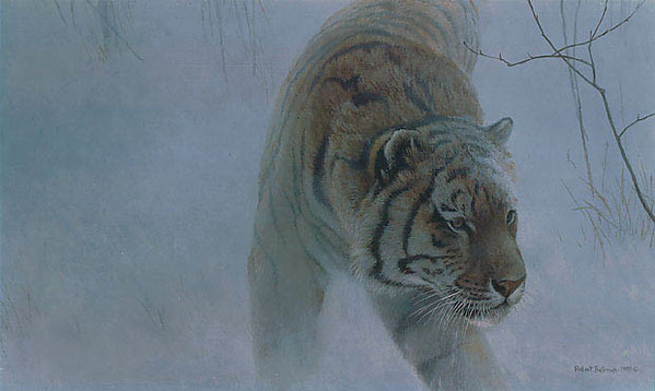Robert z Bateman Twilight Siberian Tiger