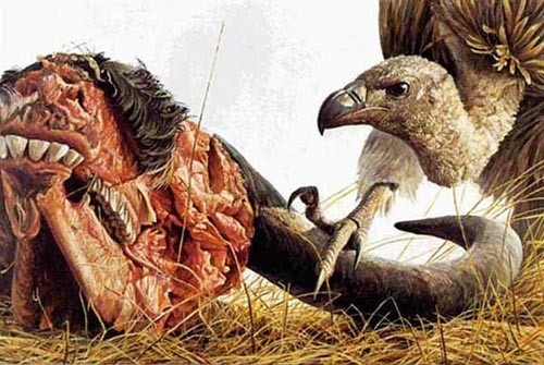 Robert z Bateman Vulture and Wildebeest