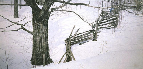 Robert z Bateman Window Into Ontario