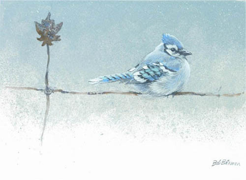 Robert z Bateman Winter Blues – Blue Jay