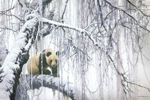 Robert z Bateman Winter Filigree Giant Panda