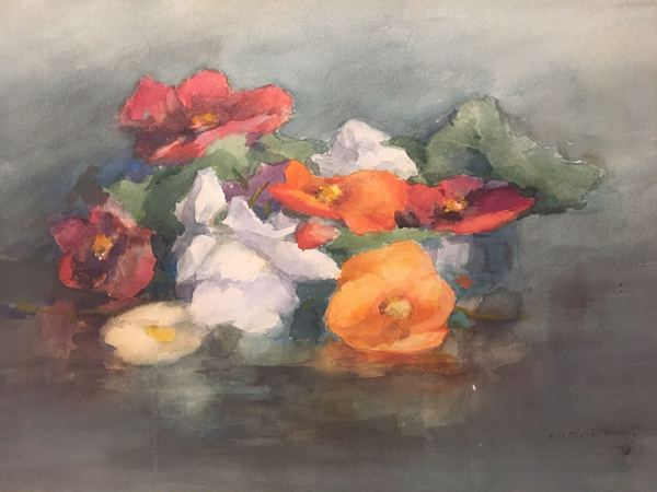 William St. Thomas Smith  Begonias