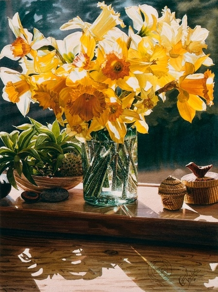 Carol z Evans Daffodils from the Garden